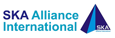 SK Alliance International